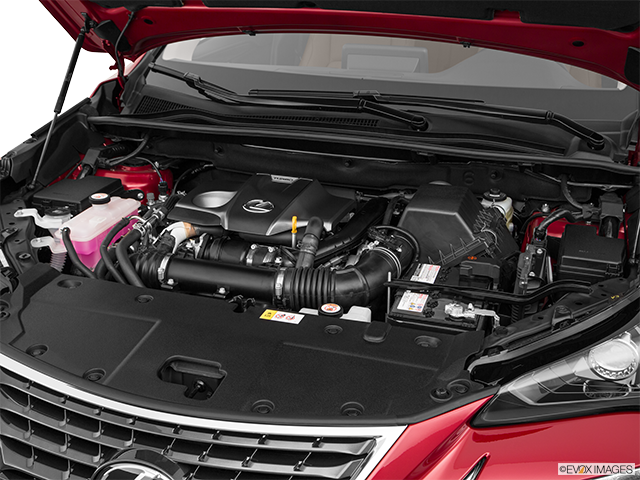 2019 Lexus NX 300 Engine